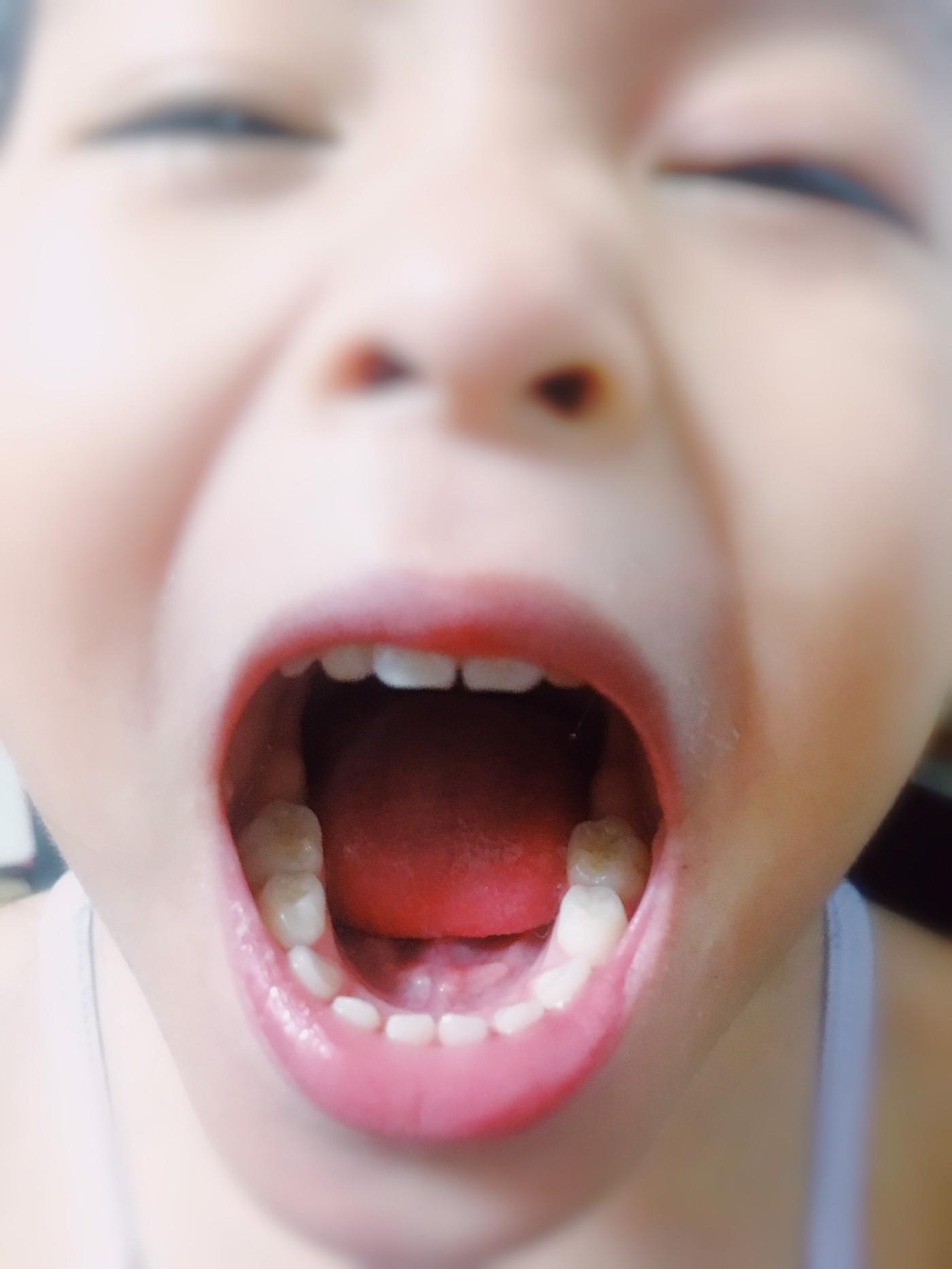 牙刷_190422_0028.jpg